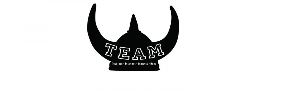 TEAM Logo Viking Hat width 1536 pixels